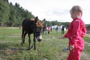 ethnopark_kochevnik_6637