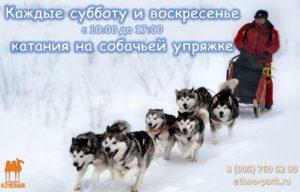 anons-sobytij-dlya-detej-na-12-13-noyabrya-2016-sergiev-posad_11