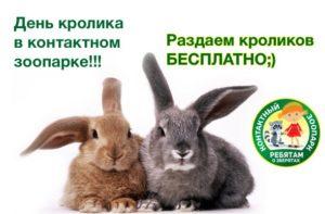 anons-sobytij-dlya-detej-na-19-20-noyabrya-2016-sergiev-posad_11